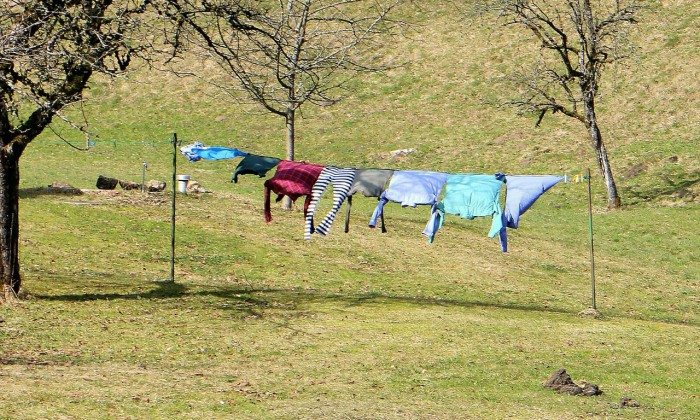 laundry-291168_1280